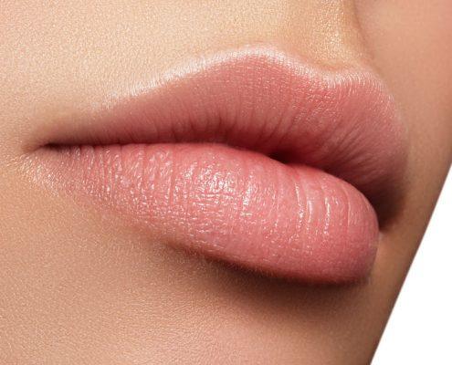 The Perfect Lip